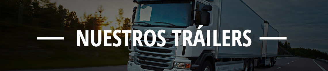 losma-nuestros-trailers-medidas-tipos